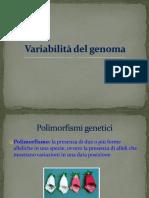 Principi BiolMol Capitolo 5