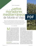 Monte el Viejo Quercus 375