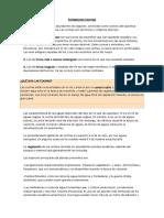 FORMACION COCHAS.docx