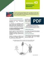 Paper 2.1 - Biotoxinas Marinas