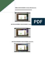SECTOR ECONÓMICO SELECCIONADO.pdf