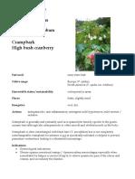 Viburnum Opulus materia medica herbs
