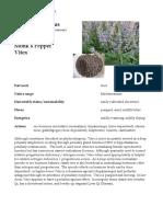 Vitex Chaste Tree materia medica herbs