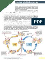 sintesiCap4Saraceni_2012.pdf