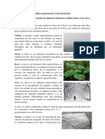 ESPECIALIDAD DE CLIMATOLOGÍA.pdf