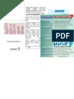 Leaflet Kartini Ritasari GIZI