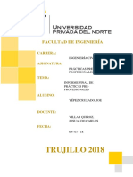FINAL-PRACTICAS PRE PROFESIONALES.docx