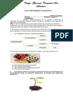 Pap Ciencias Naturales IV Periodo
