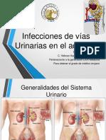Infecciones de Vías Urinarias en El Adulto