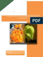 EXPORTACION_DE_AGUAYMANTO_ORGANICO_EN_AL.docx