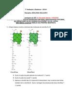 AD1-BC2-2018-1.pdf