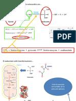 Presentación_bioquiII_1