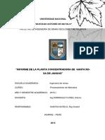 271525949-Informe-de-Procesamiento-de-Minerales.docx