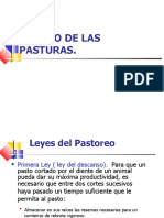 pastos-101222125623-phpapp01 (1).pptx