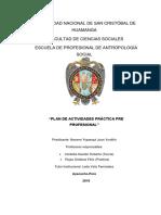 Plan de Actividades Practica 2018-II- Imprimir