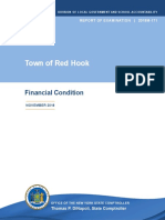 Red Hook 'Financial Condition' Report