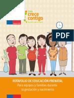 rotafolio-de-educacion-prenatal.pdf