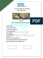 practica 1 (4).docx