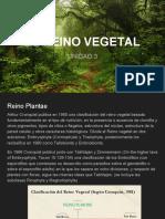 Reino Vegetal Parte 1