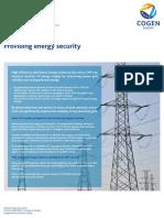 Microcogeneracion-Seguridad de Suministro, ND.pdf