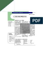 CIBERBOMBERO 2