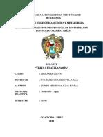 reporte- VISITA AL CENTRO DE PRODUCCION DE VINO HUAYLLAPAMPA.doc