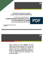 Presentacion Diapositivas Tesis sobre Bambu