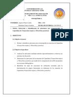 Aguirre Panchana Inform5