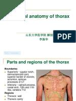 Thorax 2