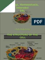 Fisiologi Sel, Homeostasis Dan Interaksi Sel-BCBBiomedik-PW2013