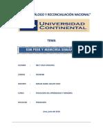 PAN°2 PSICOLOGIA DEL AYM (1).docx