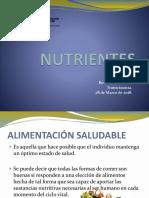 NUTRIENTES_28-03-2018