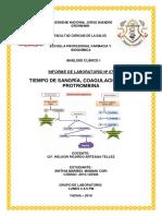 Informe Nº 07 - t. Sangria, t. Coagulacion y Tp