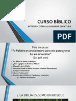 1cursobiblicolabiblia