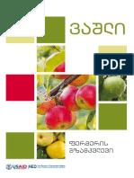 USAID_NEO_apple_guidebook_88541.pdf