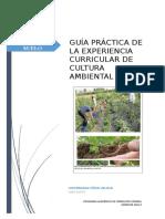 GUÍA_PRÁCTICA_06