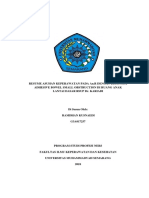 Resume Ilius PDF