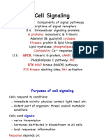Ch11- Cell Signaling Slides