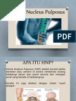 HNP (Hernia Nucleus Pulposus)