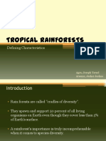 tropicalrainforests-120305074516-phpapp01