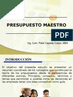 48467268 Modelo Informe de Auditoria y Carta de Control Interno