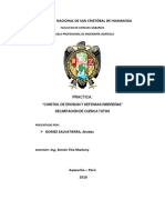 2. Defensa Ribereña_1r0 informe