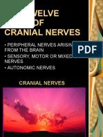 thecranialnerves-090516052046-phpapp02.pdf