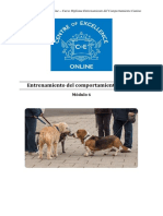 Comportamiento Canino - Módulo 5