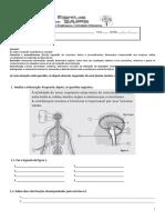 FA - Sistem Neuro-hormonal Sangue