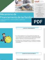 Final Mecanismo de Financiamiento de Las Familias