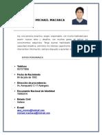 Curriculum Vitae Yohn Michael