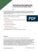 Proximal Hamstring Tendinopathy Rehab