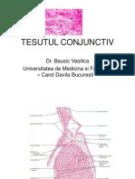 tesut conjunctiv_ppt