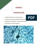 Contenido Definitivo Neuro 2013
